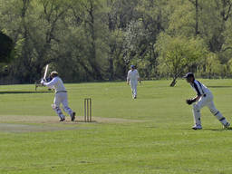 Cricket is a great outdoor sport