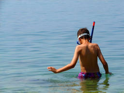 Snorkelling is just one exciting summer holiday activity!