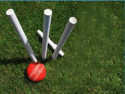 All you need to play backyard cricket is a simple cricket set
