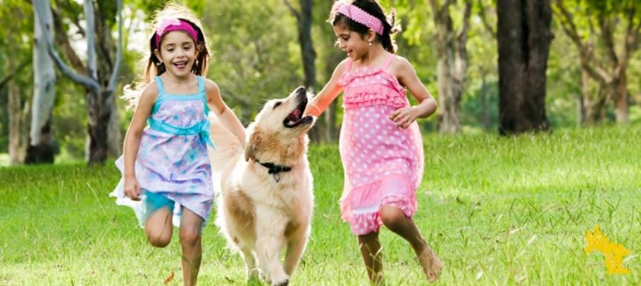 Five fun kids friendly activities to do with your family pet - rain or shine!