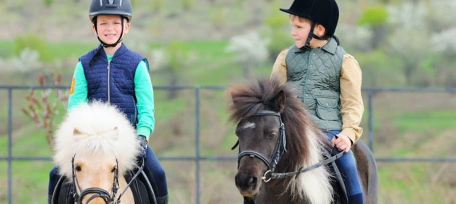 The many emotional benefits of horse riding