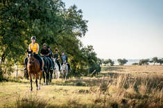 Save 15% on Your Spring Trail Ride Lanseria Horse Riding Classes & Lessons 2