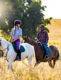 Save 15% on Your Spring Trail Ride Lanseria Horse Riding Classes & Lessons 1