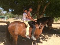 December Pony Camp Chartwell Horse Riding Classes & Lessons 3