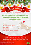 Shepherd's Fold 3 Day Christmas Pony Camp Lanseria Horse Riding Classes & Lessons 4
