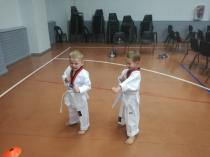 Private lessons at home or school Lonehill Taekwondo Classes & Lessons 3 _small