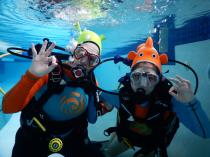 Discover Scuba Diving Experience! Constantia Kloof Swimming Classes & Lessons 4 _small