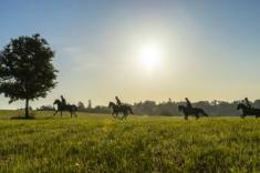 Father's Day Trail adventure ride. Lanseria Horse Riding Classes & Lessons 3 _small