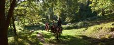 Father's Day Trail adventure ride. Lanseria Horse Riding Classes & Lessons 2 _small