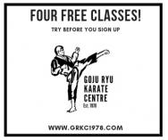 Four Free Classes Florida Hills Karate Clubs _small