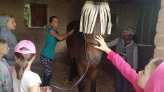 Shepherd's Fold 2 Day Pony Camp Lanseria Horse Riding Classes & Lessons 3 _small