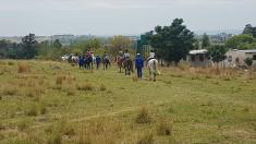 Shepherd's Fold 2 Day Pony Camp Lanseria Horse Riding Classes & Lessons 2 _small