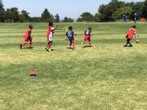 25% Off All Sign Ups via ActiveActivities. Midrand City Soccer Clubs 3 _small