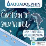 Learn to Swim Bergvliet Swimming Schools _small