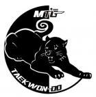 MTG - Martial Arts Taekwon-Do (Emmarentia, Northriding, Bedfordview & Norwood)