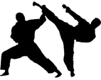 Despatch Karate Club (JKS)