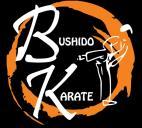 JKS Bushido Karate South Africa