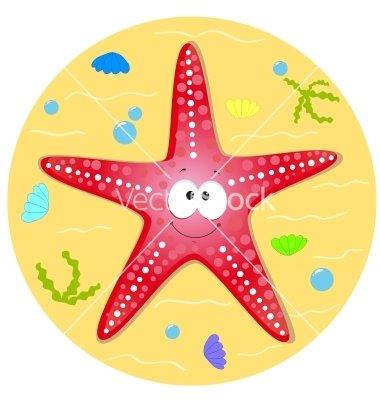 Starfish Swim School-Teaching The World How to Swim