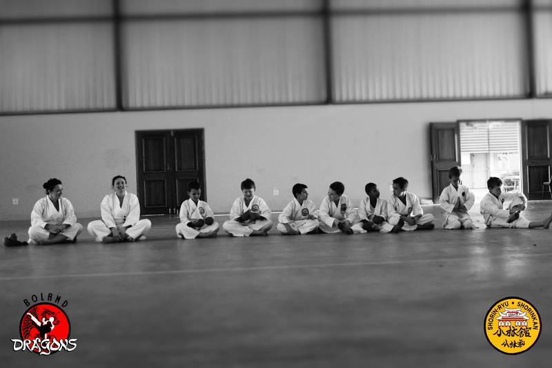 Some of the few students from Boland Dragons karate