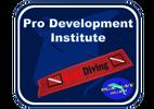 Pro Development Institute