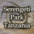 Serengeti Park Safaris