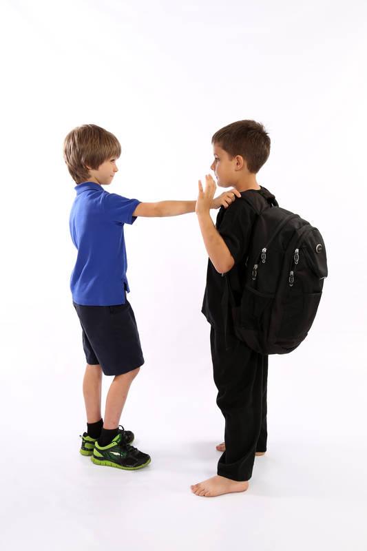 Anti-bully training