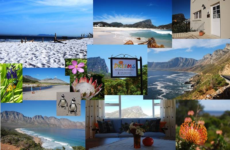 Dreams is located in a beautiful, unspoilt area only 1 hours drive from Cape Town